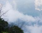 """Vườn quốc gia Bạch Mã đẹp như """"tiên cảnh"""" trong thảm sương mù giăng kín"""