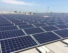 Quảng Trị: Cấp chủ trương đầu tư 2 dự án điện mặt trời 2,2 ngàn tỷ đồng
