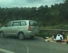 """Ô tô lại dừng đỗ """"mở tiệc"""" trên cao tốc Nội Bài - Lào Cai"""
