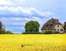 10 địa điểm đẹp nhất thế giới nên đến trong mùa xuân