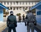 Nhóm nghị sĩ đảng Dân chủ Mỹ đề xuất dự luật kết thúc chiến tranh Triều Tiên