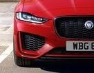 Hơn 1 tỉ ở Anh, Jaguar XE mới về Việt Nam sẽ có giá bao nhiêu?