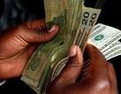 Dân Zimbabwe dửng dưng với đồng tiền mới Chính phủ phát hành