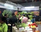 HortEx Vietnam 2019: Sôi động cùng gần 200 doanh nghiệp