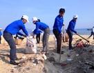 Thanh niên Bình Định hành động vì sự sống của biển