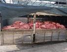 TPHCM lên phương án đối phó dịch tả lợn Châu Phi
