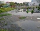 Dân ngao ngán vì nước kênh, hồ đen ngòm hôi thối