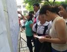 """""""Thúc"""" trẻ luyện thi vào lớp 6 Trường THPT chuyên Trần Đại Nghĩa"""