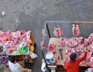 Dịch tả lợn Châu Phi bùng phát, chuyên gia chỉ cách mua thịt lợn an toàn