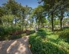 The Zen Residence - Thiên đường tiện ích nâng tầm cuộc sống