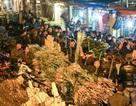 Choáng cảnh đông nghẹt người mua hoa ở chợ đêm Quảng An sát ngày 8/3