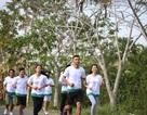 Giải chạy marathon chống biến đổi khí hậu ở đồng bằng sông Cửu Long