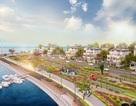 Tưng bừng lễ ra quân khu đô thị sinh thái phức hợp King Bay