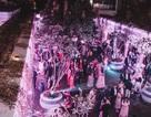 Đám cưới tỷ phú Ấn độ ở Phú Quốc: Kéo dài nhiều ngày, thuê 2 máy bay chở 700 khách mời