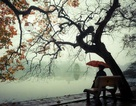 Hà Nội duy trì mưa rét, thấp nhất 16 độ C