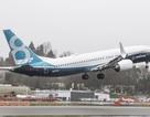 Việt Nam cấm máy bay Boeing 737 MAX đi vào không phận