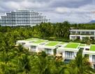 Bãi Dài - Cam Ranh: Thủ phủ du lịch mới