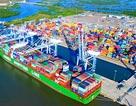 """Đại gia Vũ Văn Tiền """"nhảy"""" vào logistic Cái Mép với dự án hơn 30.000 tỷ đồng"""