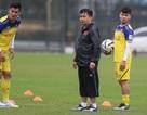 Quang Hải, Đình Trọng kịp hồi phục chấn thương trước vòng loại U23 châu Á