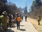 Cháy rừng lớn, huy động hàng trăm người dân cùng dập lửa cứu rừng