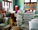 Quảng Nam phân bổ hơn 700 tấn gạo đến học sinh miền núi