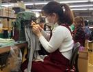 Báo Anh viết về những bất cập của chương trình thực tập sinh Việt tại Nhật Bản