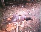 Tình tiết bất ngờ trong vụ bắt nghi phạm giết vợ hờ ở Tiền Giang