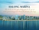 Halong Marina khu đô thị nghỉ dưỡng, giải trí chuẩn quốc tế bên bờ vịnh