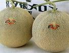 Vì sao người Nhật bỏ 635 triệu đồng mua một cặp dưa lưới, 105 triệu đồng/quả dâu tây?