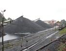 Xin xuất 2 triệu tấn than dù vẫn nhập chục triệu tấn, Bộ Công Thương nói gì?
