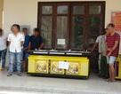 Mua máy game bắn cá đem về nhà tổ chức sòng bạc