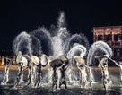 Reuters ghi nhận Hội An sở hữu Chương trình biểu diễn thực cảnh đẹp nhất thế giới