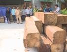 Truy đuổi xe chở gỗ lậu mang theo nhiều biển số giả