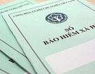 Đà Nẵng phát triển đối tượng tham gia bảo hiểm xã hội tự nguyện