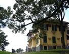 Cận cảnh Dinh tỉnh trưởng - di sản hoang phế ở Đà Lạt