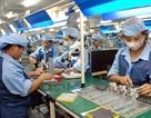 Thủ tục hành chính đang trói buộc năng suất lao động