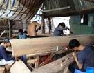 Phát động chiến dịch thanh tra lao động ngành gỗ năm 2019