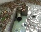 Đề nghị xử phạt 2 công ty lén xả thải bẩn ra môi trường