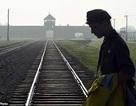 Du khách đối diện 10 năm tù vì ăn cắp thanh ray trên đường tàu