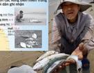 Đa số người dân Việt Nam chọn bảo vệ môi trường, hy sinh tăng trưởng