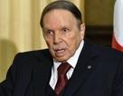 Tổng thống Algeria từ chức sau 20 năm cầm quyền, người dân xuống đường ăn mừng