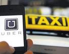 Uber bị kiện đòi bồi thường 10 triệu USD vì tài xế quấy rối tình dục nữ hành khách