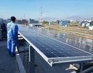 Gia nhập ngành điện mặt trời: Không bây giờ thì bao giờ?