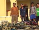 Tỉnh Phú Yên yêu cầu kiểm tra, báo cáo vấn nạn khai thác hải sản kiểu tận diệt!