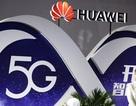Cựu quan chức quân đội Mỹ đồng loạt cảnh báo nguy cơ mạng 5G Trung Quốc