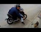 Hà Nội: Nhóm trộm chó khống chế, hiếp dâm hai thiếu nữ