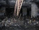 Vụ cháy Carina: Kiến nghị xem xét trách nhiệm hình sự đơn vị vận hành chung cư