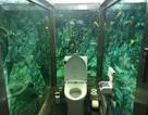 Độc đáo nhà vệ sinh giữa lòng đại dương tại quán cà phê Nhật Bản