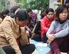 Chủ tịch Hà Nội nói về việc hơn 250 giáo viên kêu cứu