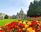 Vì sao phụ huynh cho con du học từ lớp 9,10 tại  Victoria, Canada?